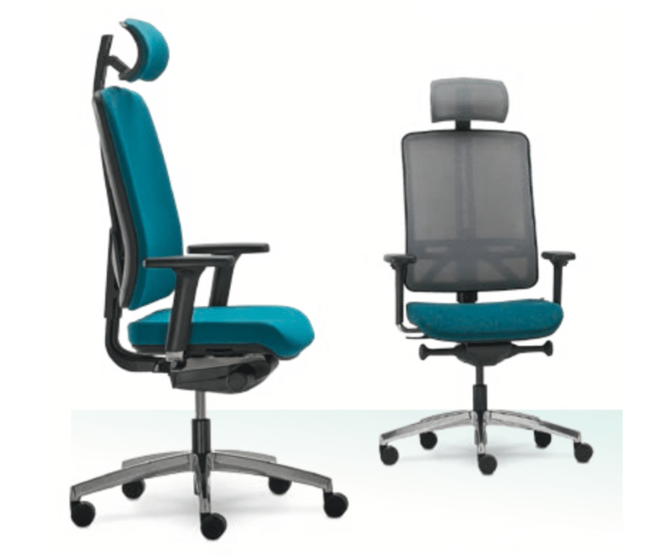 Flexi Ergonomic desk chair with headrest