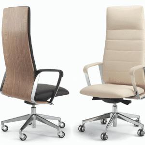 Directa ergonomic desk chair